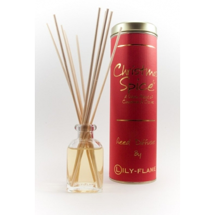 Christmas Spice Diffuser